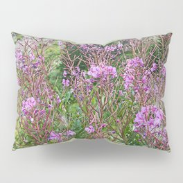 FIREWEED GOING TO LATE SUMMER SEED Pillow Sham