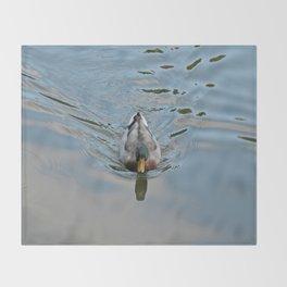 Mallard duck swimming in a turquoise lake 2 Throw Blanket