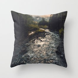The Sandy River II Throw Pillow