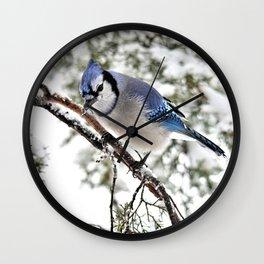 April Fools' Jay Wall Clock