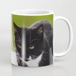 Softpaws Coffee Mug