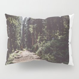 Entering the Wilderness - Landscape and Nature Photography Pillow Sham