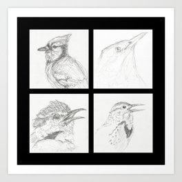 Birds 3 Art Print