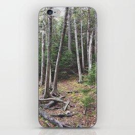 Maine Woods iPhone Skin