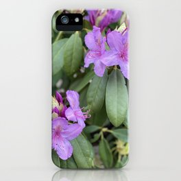 Flowers Are Growing Souls iPhone Case
