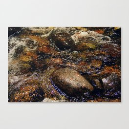Stream and Stones Canvas Print