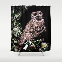 Handsome Hooter Shower Curtain