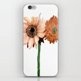 Sunflower IV iPhone Skin