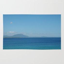 Playa Alicia, Republica Dominicana Rug