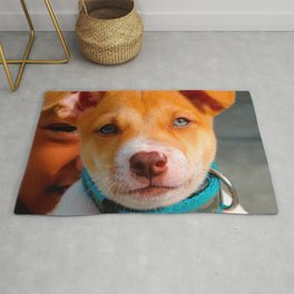 Gold and White Puppy Dog with Blue Collar Rug