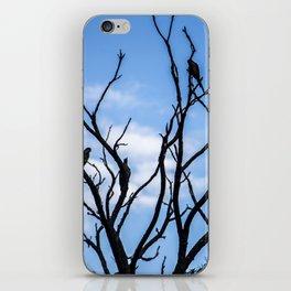 Blue Sky photography iPhone Skin