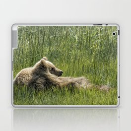 Drifting Off - Bear Cubs, No. 7 Laptop & iPad Skin