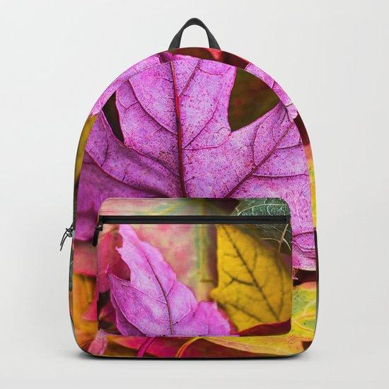 Indian Summer 4 Backpack