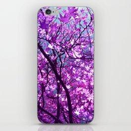 purple tree XXXIII iPhone Skin