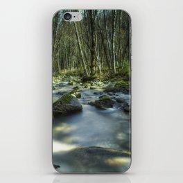 A Companionable Solitude iPhone Skin