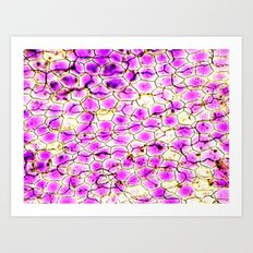 Purple Pathway Art Print