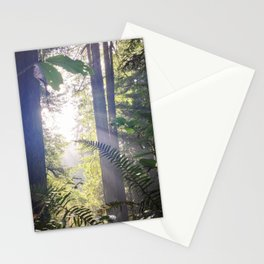 Prairie Creek Redwoods Stationery Cards