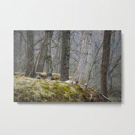The White Tree Metal Print