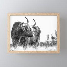 Scottish Highland Cow Framed Mini Art Print