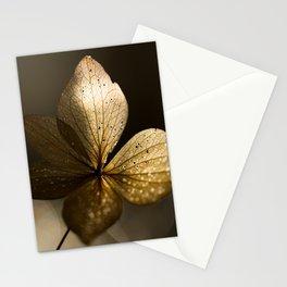 Autumn Scene - Dry Petals with Golden Sunset Light #decor #society6 #buyart Stationery Cards