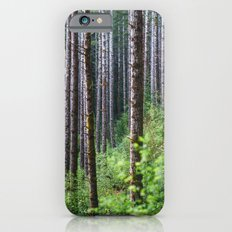Trees: II // Oregon Slim Case iPhone 6s