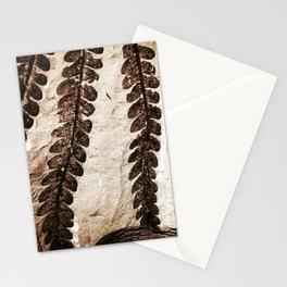 Fern Fossil Stationery Cards