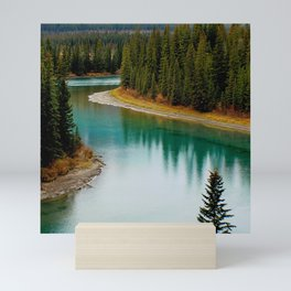 Canada Photography - Beautiful River In Canadian Spruce Forest Mini Art Print