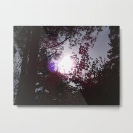 Sunshine After A Rainy Day Metal Print