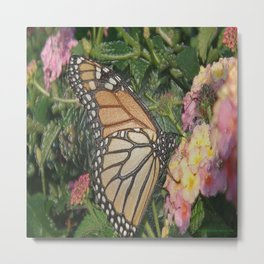 Monarch Butterfly Abstract Metal Print