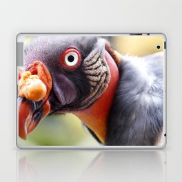 King Vulture Laptop & iPad Skin