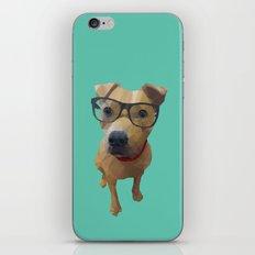 Kane the Staffie Dog Polygon Art iPhone & iPod Skin