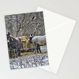 Feeding in The Snow Stationery Cards