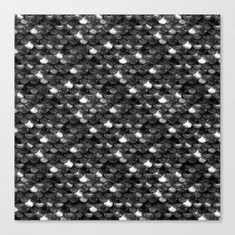 Black and White Scales Canvas Print