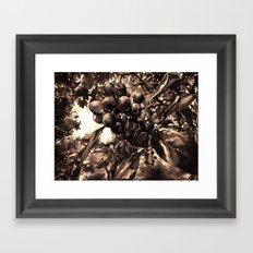 A Little Eden Framed Art Print