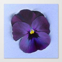 Ultra violet viola tricolor Canvas Print