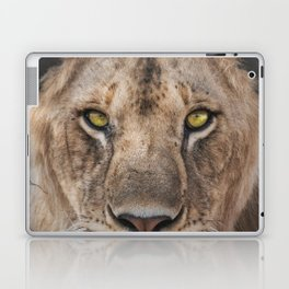 Lioness Portrait (Color) Laptop & iPad Skin