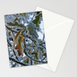 Frosty Leaf Stationery Cards