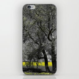 The Beauty of Canola Fields iPhone Skin