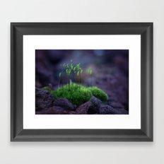 Strange Island Framed Art Print