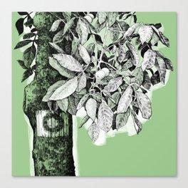 Wayside Canvas Print