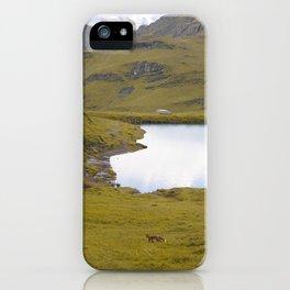 Wild Fox 2 iPhone Case