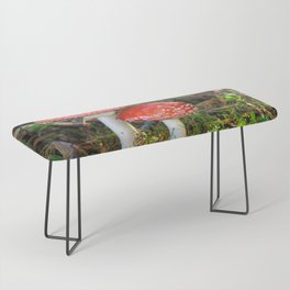 Fly agaric Bench