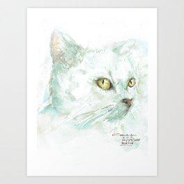 Portia  Art Print