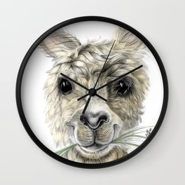 Alpaca eating Daisies Wall Clock