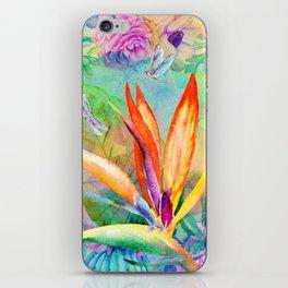 Bird of paradise i iPhone Skin