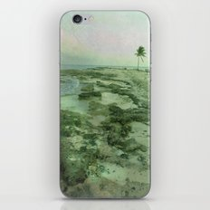 Tip of Paradise iPhone & iPod Skin
