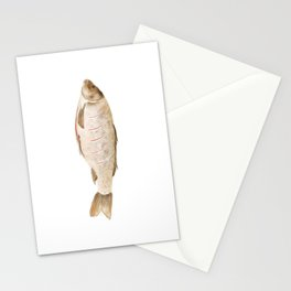 Watercolor Illustration of The process of marinating a fish Stationery Cards