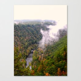 Pine Creek Gorge Canvas Print