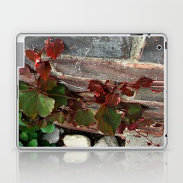 Red Ivy Laptop & iPad Skin