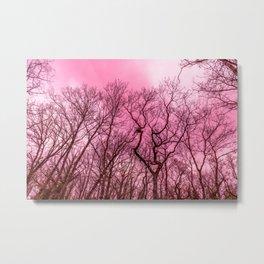 Naked trees, pink sky Metal Print